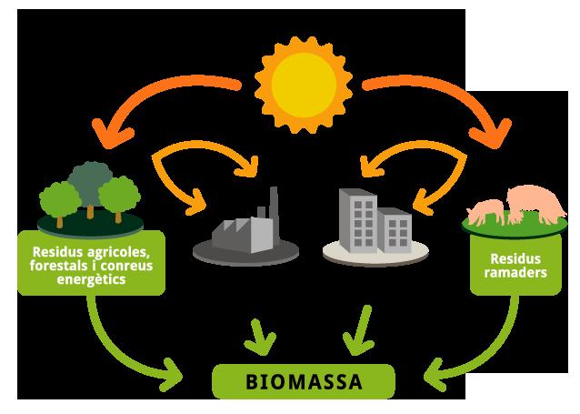 Fonts D Energia A L Actualitat Ecologia I Sostenibilitat